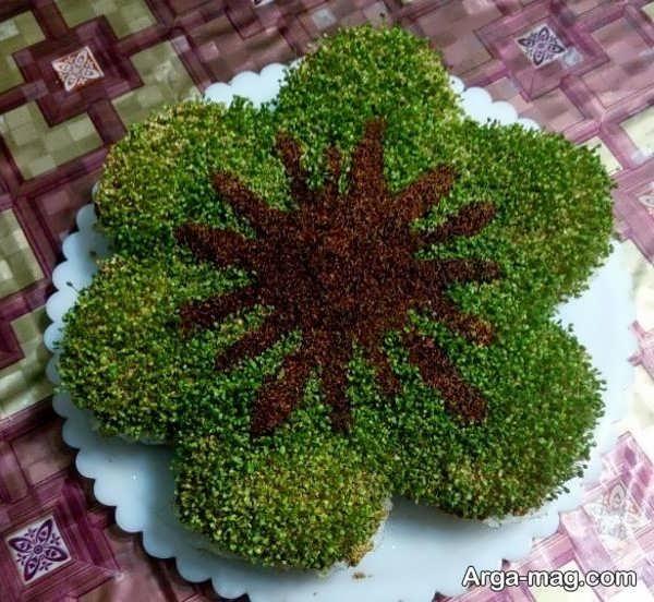 سبزه با خاکشیر و خرفه با مدل بی نظیر