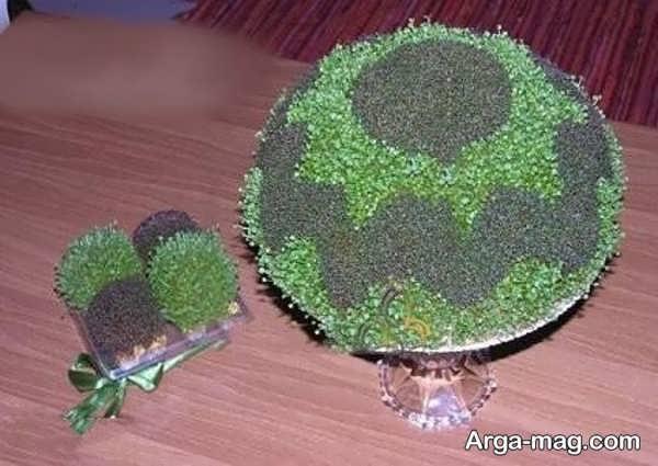 سبزه با خاکشیر و خرفه با مدل ایده آل