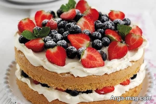 ساده ترین دیزاین کیک خانگی با میوه