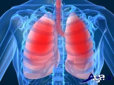 سلامتی دستگاه تنفس با پونه