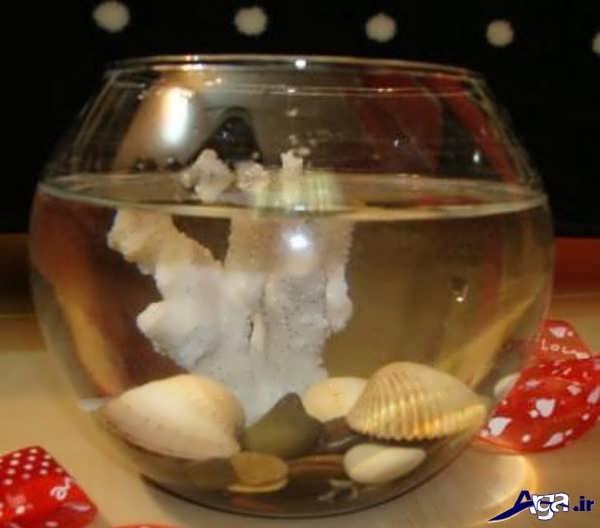 تزیینات جدید تنگ ماهی