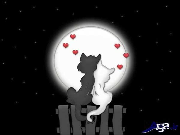عکس کارتونی عاشقانه