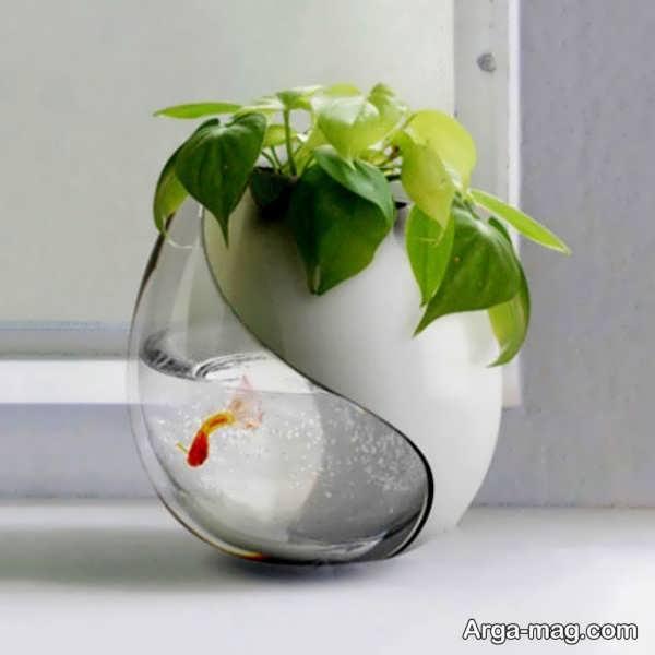 ایده های تماشایی برای دیزاین تنگ ماهی
