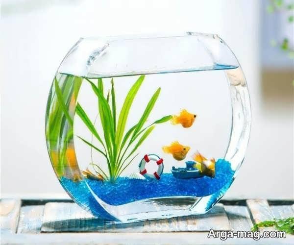 ایده های هنرمندانه برای دیزاین تنگ ماهی