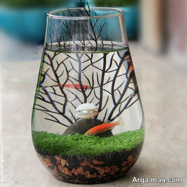 دیزاین جذاب تنگ ماهی