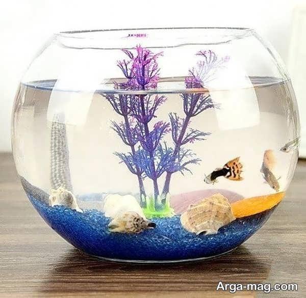 قشنگ ترین تزیین تنگ ماهی