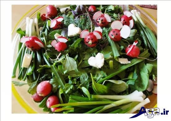 تزیین تربچه و سبزی