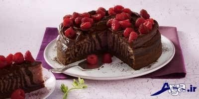 مدل تزیین کیک زبرا زیبا