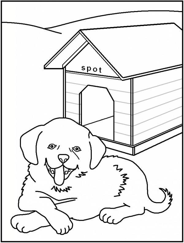 نقاشی حیوانات برای کودک