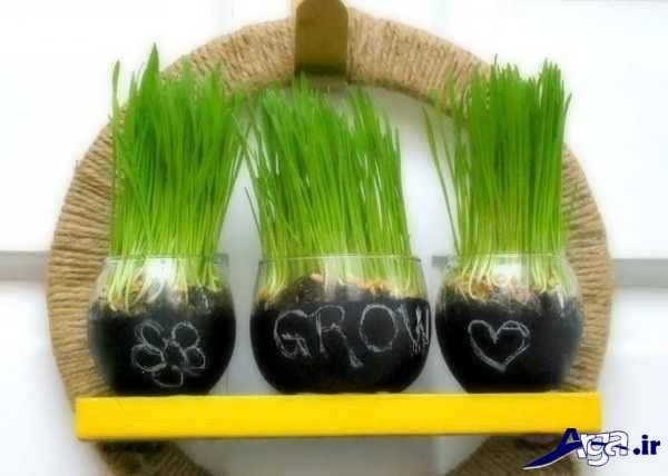 سبزه هفت سین کودکان