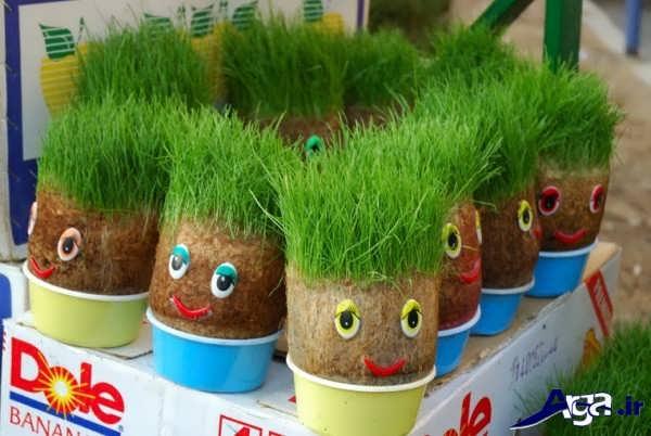 سبزه هفت سین