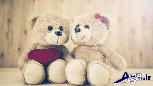 عکس عاشقانه عروسکی خرس قهوه ای