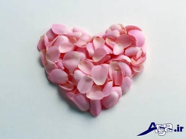 عکس قلب با گل محمدی