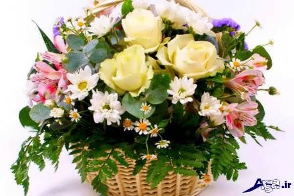 سبد گل طبیعی