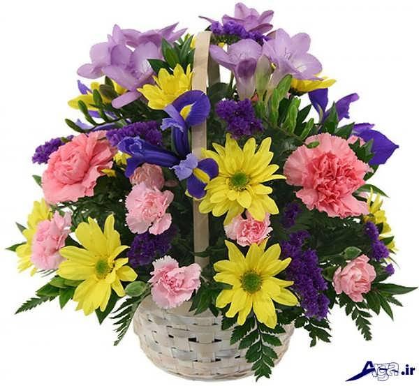 گل طبیعی خواستگاری