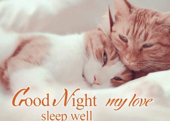 عکس عاشقانه شب بخیر