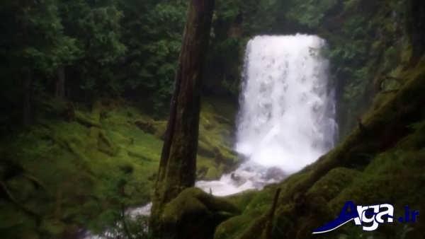 آبشار زیبا در طبیعت