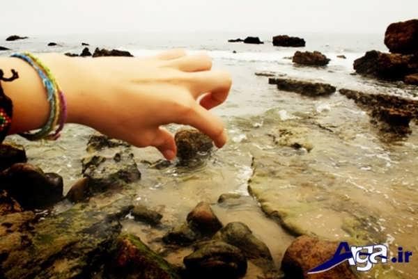 کس خطای دید تخته سنگ
