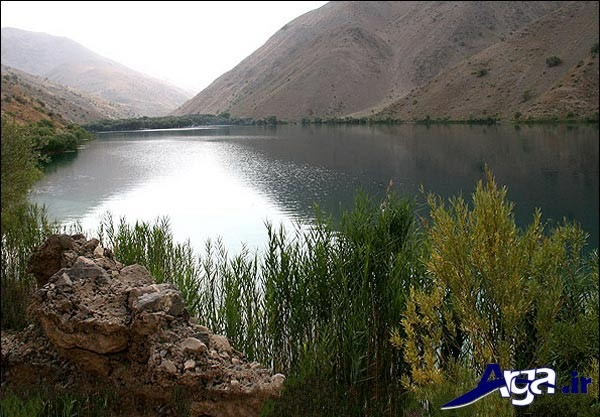 عکس طبیعت ایران همیشه سبز