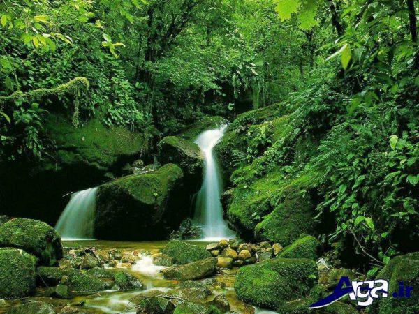 طبیعت شمال ایران زیبا
