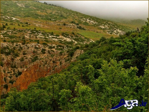 عکس طبیعت ایران سبز