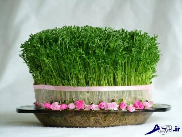 سبزه برای هفت سین