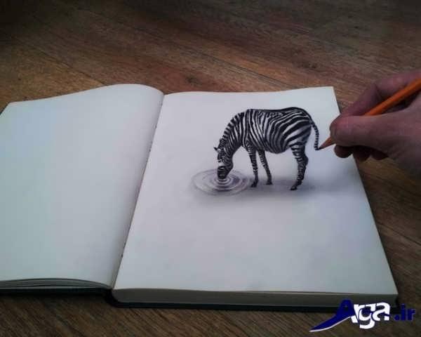 نقاشی های سه بعدی گوره خر