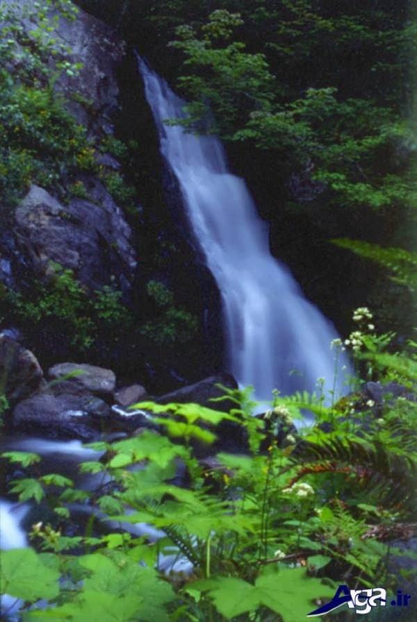 عکس آبشار کریک