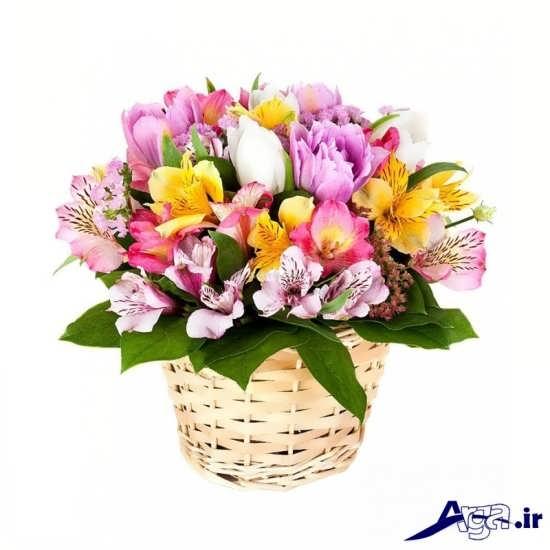 عکس سبد گل زیبا و جدید