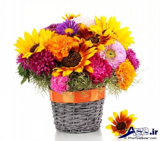عکس سبد گل با گل های متنوع