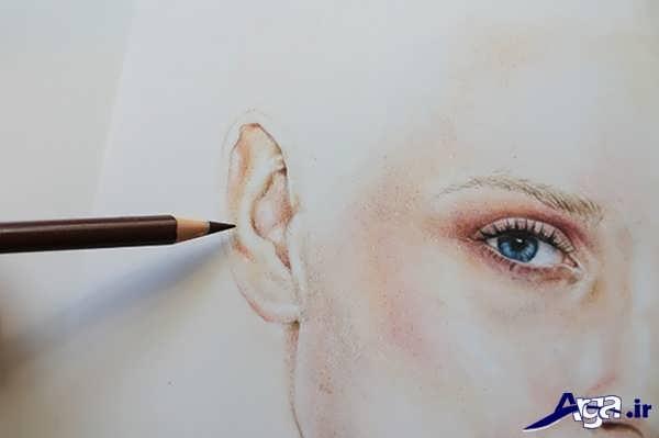 نقاشی گوش با مداد رنگی