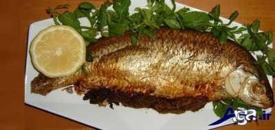 دستور پخت ماهی قزل آلا