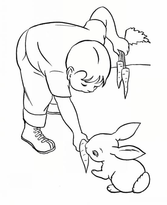 رنگ آمیزی های جدید و کودکانه از خرگوش