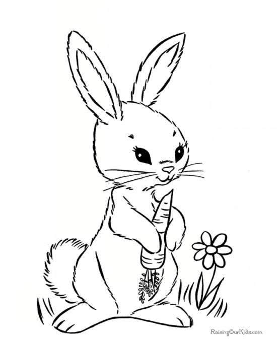 خرگوش زیبا و نقاشی آن برای کودکان