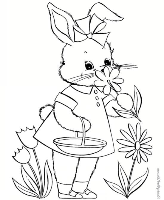 جدیدترین نقاشی های کودکانه از خرگوش
