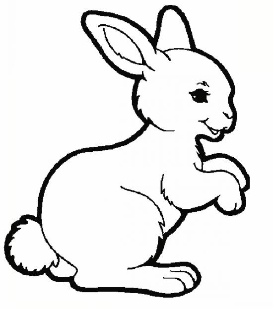 small bunny coloring pages - photo#34