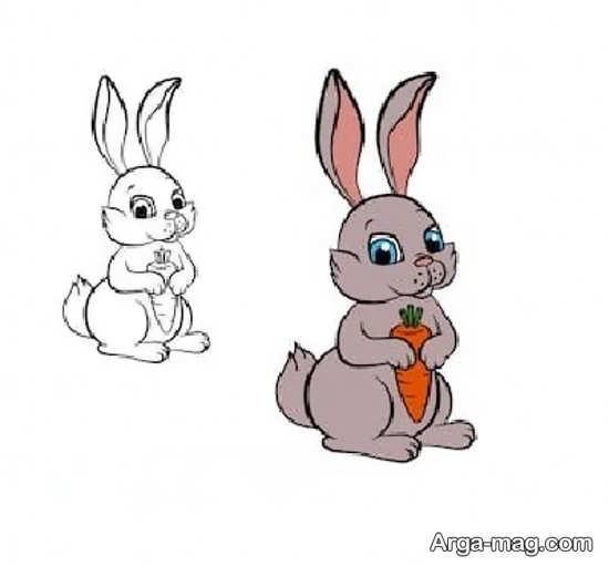 مدل متفاوت رنگ آمیزی خرگوش