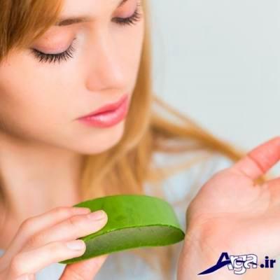 آلوورا و مزایای آن برای پوست و مو
