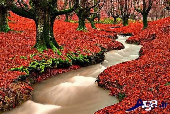 عکس رودخانه