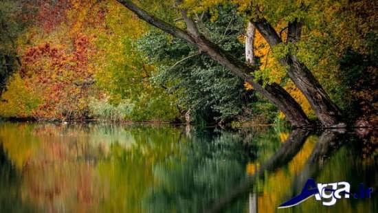 عکس های زیبا از طبیعت بکر پاییزی