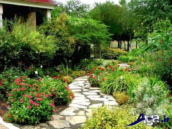 مناظر زیبا و فضای سبز