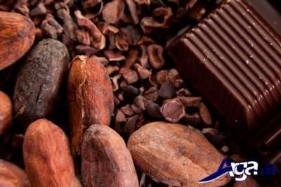 دانه های کاکائو و فواید آن ها