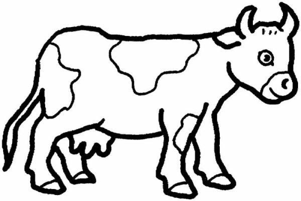 نقاشی گاو برای کودک