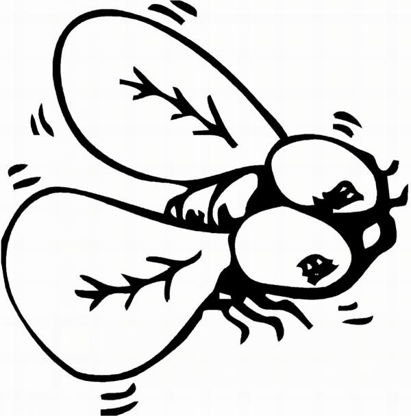 coloring pages of flying ladybugs - photo#15