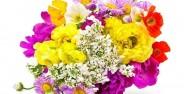 عکس گل های زیبا در دنیا
