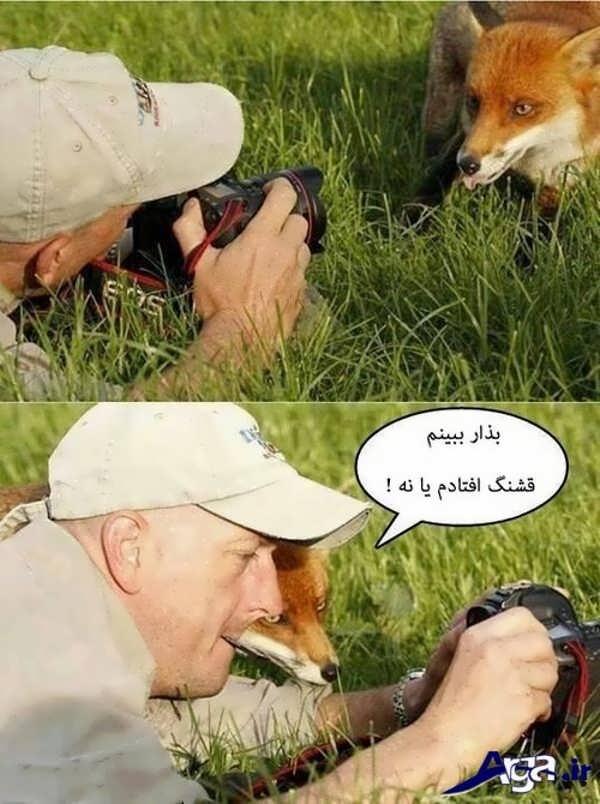 عکس های خنده دار عکاسی