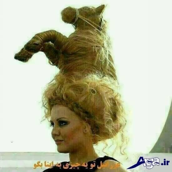 عکس های خنده دار تلگرام مدل مو