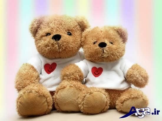 عکس دو خرس عروسکی عاشق