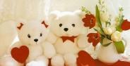 عکس خرس عروسکی قشنگ
