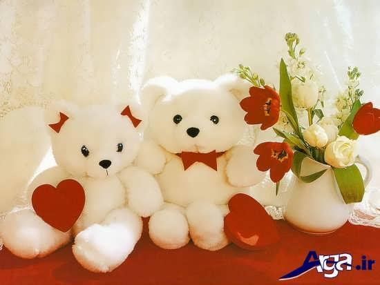 خرس های عروسکی عاشق
